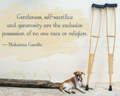 500-generosity-quote-mahatma-gandhi