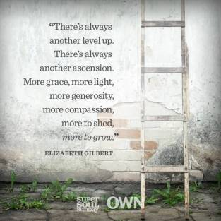Theres-always-another-level-up.-Theres-always-another-ascension.-More-grace-more-light-more-generosity-more-compassion-more-to-shed-more-to-grow.-Elizabeth-Gilbert