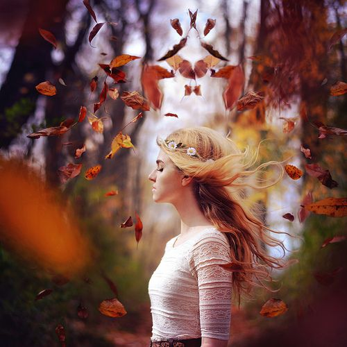 7132dc0493f655e9f328279b0a89a124--autumn-photography-photography-ideas
