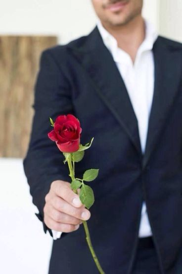 7e49cf6aa71e74936af6cf31aabd1db3--single-rose-life-list