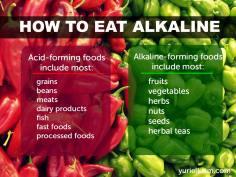 alkaline-1s
