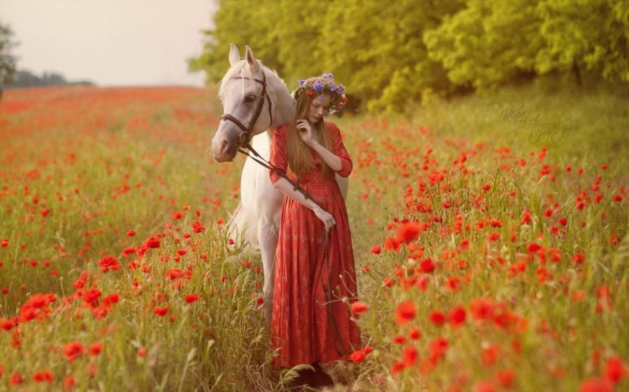 women-horse-nature-flowers-animals-poppies-1080P-wallpaper-middle-size