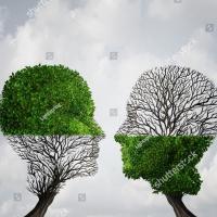 Copaci fara padure- Versuri Tatiana Stepa -