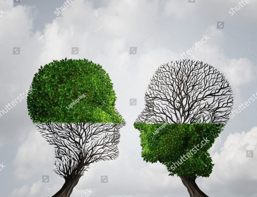 stock-photo-complement-each-other-concept-as-two-trees-with-half-of-the-tree-with-full-leaves-and-the-other-362993597